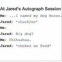 Chihuahua, Food, and Memes: At Jared's Autograph Session  Me: ...I named my dog Moose  Jared: *chuckles*  red: *chuckles  Me:  Jared: Big dog?  Me: Chihuahua.  Jared: *chokes on food