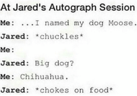 Chihuahua, Food, and Memes: At Jared's Autograph Session  Me: ...I named my dog Moose  Jared: *chuckles*  Me:  Jared: Big dog?  Me: Chihuahua  Jared: *chokes on food @ myself please stop being so inactive