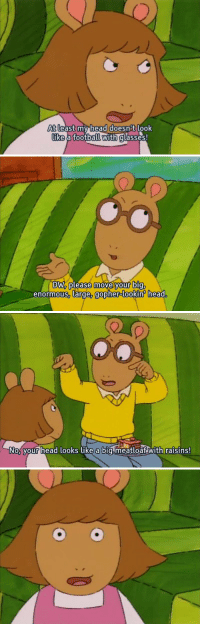 Arthur roasted the hell out of D.W 😂😂: At least my head doesnt look  like a football with glasses   DW, please move your big,  enormous, large, gopher-lookin head   No your head looks like a bigmeatloaf with raisins! Arthur roasted the hell out of D.W 😂😂