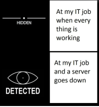 Boss Be Like: At my IT job  When every  thing is  working  HIDDEN  At my IT job  and a server  goes down  DETECTED