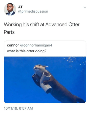 Dank, Memes, and Target: AT  @primediscussion  Working his shift at Advanced Otter  Parts  connor @connorhannigan4  what is this otter doing?  10/11/18, 6:57 AM Working hard or hardly working? by spicy_r1ce MORE MEMES