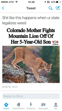 <p>Toke or Flight reaction (via /r/BlackPeopleTwitter)</p>: AT&T  14:28  Tweet  a  Shit like this happens when ur state  legalizes weed  Colorado Mother Fights  Mountain Lion Off Of  Her 5-Year-Old Son Ts*  THESHADERDOM.CONM  6/18/16, 14:21  Reply to Rico  Home Notifications Moments Messages  Me <p>Toke or Flight reaction (via /r/BlackPeopleTwitter)</p>