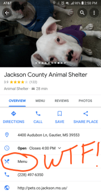 Funny, Animal, and Animal Shelter: AT&T  4GE all! 98%  2:58 PM  Jackson County Animal Shelter  3.9 ★★★★★ (122)  Animal Shelter 28 min  OVERVIEW  MENU  REVIEWS  PHOTOS  DIRECTIONS  CALL  SAVE  SHARE PLACE  4400 Audubon Ln, Gautier, MS 39553  O Open Closes 4:00 PM  Menu  (228) 497-6350  http://pets.co.jackson.ms.us/
