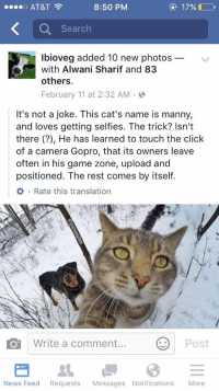 Cats, Click, and Funny: AT&T  8:50 PM  17%  ee eo Search  lbioveg added 10 new photos  with Alwani Sharif and 83  others.  February 11 at 2:32 AM  It's not a joke. This cat's name is manny,  and loves getting selfies. The trick? Isn't  there He has learned to touch the click  of a camera Gopro, that its owners leave  often in his game zone, upload and  positioned. The rest comes by itself.  Write a comment  Post  O News Feed  Requests  Messages Notifications  More The future is here 😂