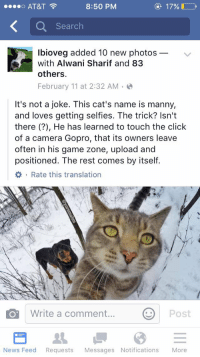 Cats, Click, and Future: AT&T  8:50 PM  o ee Search  lbioveg added 10 new photos  with Alwani Sharif and 83  others.  February 11 at 2:32 AM  It's not a joke. This cat's name is manny,  and loves getting selfies. The trick? Isn't  there He has learned to touch the click  of a camera Gopro, that its owners leave  often in his game zone, upload and  positioned. The rest comes by itself.  Write a comment  Post  O News Feed  Requests  Messages Notifications  More The future is here 😂