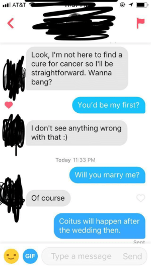 Saving myself: AT&T  Look, I'm not here to find a  cure for cancer so I'll be  straightforward. Wanna  bang?  You'd be my first?  I don't see anything wrong  with that :  Today 11:33 PM  Will you marry me?  Of course  Coitus will happen after  the wedding then.  Sent  GIF  Type a message  Send Saving myself