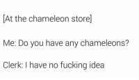 Fucking, Chameleon, and Idea: At the chameleon store]  Me: Do you have any chameleons?  Clerk: I have no fucking idea