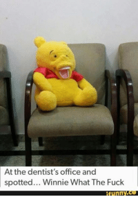 haha: At the dentist's office and  spotted... Winnie What The Fuck  funny haha