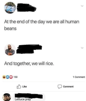 Dank, Memes, and Target: At the end of the day we are all human  beans  And together, we will rice.  SO 150  1 Comment  Like  Comment  Lettuce pray Power of vegetables by shantanu011 MORE MEMES