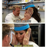 Dank, Dope, and Funny: at  WHAT ARE YOU!  AN IDIOT SANDWICH Gordon Ramsay is my spirit animal clean memes cleanmemes funny funnymemes humour cleanhumour funnyhumour cleanbreadmemes bread yahhh ugh yay lol cool omg dope dank hashtag