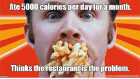 """Memes, Dr Oz, and Engineering: Ate 5000 calories per day foramonth.  Thinks the restaurantis the problem  Facebook.com/skepticalmemesociety Spurlock's """"documentary"""" was a textbook case of an uncontrolled experiment engineered to produce a desired outcome. Anyone eating 75,000 extra calories per month without a lot of exercise was always going to experience weight gain. However there is growing evidence from Spurlock, Vani Hari, Dr Oz, etc, that bad science is good for your career. http://bit.ly/1onICOv (Image: Morgan Spurlock (FU))"""