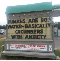 Facebook, Memes, and Anxiety: ATERSBASICAL  CUCUMBERS  WITH ANXIETY  963 E. Hammond Rd  HENTSCHELHARDWARE  e Mile Rd. Traverse City, Mi 49686  facebook.com Store This is not disturbing