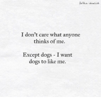 Memes, 🤖, and Exceptionally: Athe idealist  I don't care what anyone  thinks of me.  Except dogs I want  dogs to like me.