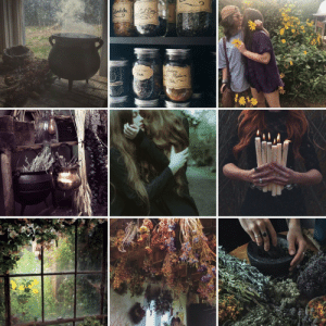 butterfly-sapphics:  Woodland witch wlw: Atondula  Yedoore  Neo Meon  Tea  Tea butterfly-sapphics:  Woodland witch wlw