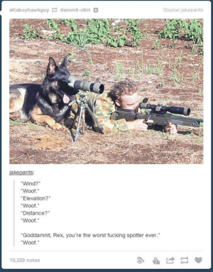 "Tactical dogomg-humor.tumblr.com: attaboyhawkguy dammit-clint D  Source: jakepants  jakepants:  ""Wind?""  ""Woof.""  ""Elevation?""  ""Woof.""  ""Distance?""  ""Woof.""  ""Goddamnit, Rex, you're the worst fucking spotter ever.""  ""Woof.""  10,229 notes Tactical dogomg-humor.tumblr.com"