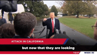 California, House, and Record: ATTACK IN CALIFORNIA  but now that they are looking  TEXT  WEEK 93 While Republicans continue with record-low unemployment and a roaring economy, the new Democrat house is leading with gridlock!