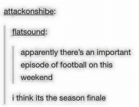 Memes, 🤖, and Apparate: attack onshibe:  flat sound:  apparently there's an important  episode of football on this  weekend  i think its the season finale Ha ~Spiderman