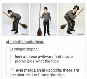 Magically Funny Harry Potter Memes and Tumblr Posts: attackofthepotterhead  jamespotterphd  look at these awkward first movie  promo pics what the fuck  If I ever meet Daniel Radcliffe, these are  the pictures I will have him sign. Magically Funny Harry Potter Memes and Tumblr Posts