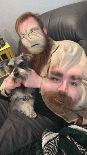 Dog, Faceswap, and But: Attempted a faceswap with my dog but