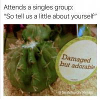 "Memes, Good, and Christian Memes: Attends a singles group:  ""So tell us a little about yourself""  Damaged  but adorable  @bestchurchmemes 17 Christian Memes This Week That Will Give You a Good Laugh!"