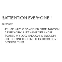 Dog, Working, and She: ATTENTION EVERYONE!!  mira guey  4TH OF JULY IS CANCELED FROM NOW ON!  A FIRE WORK JUST WENT OFF AND IT  SCARED MY DOG! ENOUGH IS ENOUGH!  SHE DOESNT DESERVE THIS! DOGS DONT  DESERVE THIS! SAVE THE DOGS