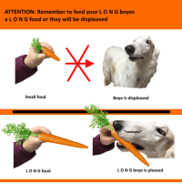 "Food, Reddit, and Indeed: ATTENTION: Remember to feed your L O N G boyes  aLON G food or they will be displeased  ar  Small food  Boye is displeased  *consume*  LON G food  LON G boye is pleased <p>[<a href=""https://www.reddit.com/r/surrealmemes/comments/8g399v/very_pleased_indeed/"">Src</a>]</p>"