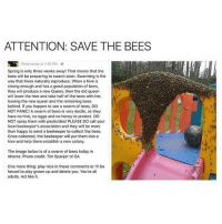 !!!!!: ATTENTION: SAVE THE BEES  Spring is only three weeks away! That means that the  bees will be preparing to swarm soon. Swarming is the  way that hives naturally reproduce. When a hive is  strong enough and has a good population of bees  they will produce a new Queen, then the old queen  will leave the hive and take half of the bees with her  leaving the new queen and the remaining bees  behind. If you happen to see a swarm of bees, DO  NOT PANIC! A swarm of bees is very docile, as they  have no hive, no eggs and no honey to protect. DO  NOT spray them with pesticides! PLEASE DO call your  local beekeeper's association and they will be more  than happy to send a beekeeper to collect the bees  Once collected, the beekeeper will put them into a  hive and help them establish a new colony  The image below is of a swarm of bees today in  Atlanta. Photo credit: Tim Spanjer of GA  One more thing: play nice in these comments or l'll be  forced to play grown up and delete you, You're al  adults. Act like it. !!!!!