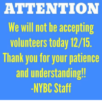 ATTENTION  We will not be accepting  Volunteers today 12/15  lhank you for your patience  and understanding!  -NYBC Staff 🚨ATTENTION VOLUNTEERS🚨 We will NOT be accepting volunteers today THURSDAY 12/15‼️ Thank you for your understanding and endless support!!