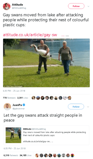 goawfma:gay swans you are doing amazing sweeties: Attitude  @AttitudeMag  Follow  Gay swans moved from lake after attacking  people while protecting their nest of colourful  plastic cups:  attitude.co.uk/article/gay-sw  ©CEN/Franz Steinegger  6:30 PM-25 Jun 2018  778 Retweets 2,391 Likes   JuanPa  @jpbrammer  Follow  Let the gay swans attack straight people in  peace  Attitude @AttitudeMag  Gay swans moved from lake after attacking people while protecting  their nest of colourful plastic cups:  attitude.co.uk/article/gay-sw  6:35 PM 25 Jun 2018  6,310 Retweets 24,185 Likes goawfma:gay swans you are doing amazing sweeties