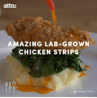 Memes, Chicken, and Amazing: attn:  AMAZING LAB-GROWN  CHICKEN STRIPS  MEMPHIS MEATS These lab-grown chicken tenders taste just like real chicken.