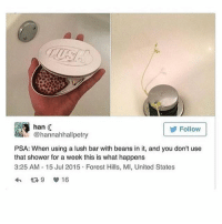 Shower, Lush, and United: AUAS  Follow  @hannahhallpetry  PSA: When using a lush bar with beans in it, and you don't use  that shower for a week this is what happens  3:25 AM 15 Jul 2015 Forest Hills, MI, United States IM DEA