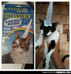 He is not pleasedomg-humor.tumblr.com: Audia Milk.  INFLATABIE JAS  UnicoPn  FOR CATS!  INFLATABLE  UNICORN  HORN  FOR  CATS!  CATS  LOVE  IT!  FUNNY STUFF ON MEMEPIX.COM  MEMEPIX.COM He is not pleasedomg-humor.tumblr.com