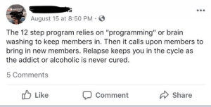 """Brain, Free, and Sober: August 15 at 8:50 PM  The 12 step program relies on """"programming"""" or brain  washing to keep members in. Then it calls upon members to  bring in new members. Relapse keeps you in the cycle as  the addict or alcoholic is never cured.  5 Comments  Like  Share  Comment Man blames inability to get sober on the free AA 12 step program."""