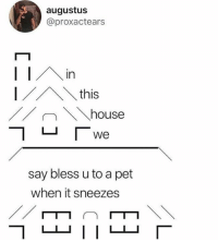 Dank, House, and Augustus: augustus  @proxactears  Ithis  house  We  say bless u to a pet  when it sneezes
