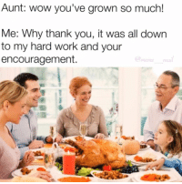 Memes, Annoyed, and Annoying: Aunt: wow you've grown so much!  Me: Why thank you, it was all down  to my hard work and your  encouragement.  meme  mal Growing isnt an achievement😬‼️‼️‼️‼️😂 lmao dank thanksgiving thanksgivingmemes blackfriday happythanksgiving annoying funny haha jokes memes savage oc og tagamate like4like mememail