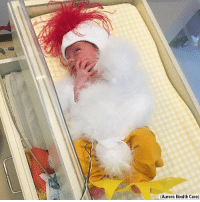 Halloween, Memes, and Wisconsin: (Aurora Health Care) ADORABLE: These newborns in the NICU at Aurora Health Care's Women's Pavilion in Wisconsin are dressed to impress for a Halloween costume contest.
