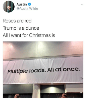 Christmas, Flo, and Trump: Austin  @AustinWilde  Roses are red  Trump is a dunce  All I want for Christmas is  Multiple loads. All at once  flo