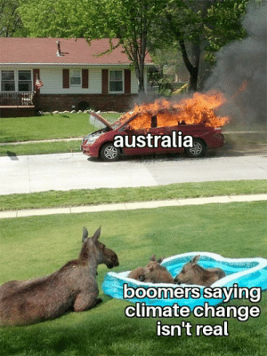 ah that's hot: australia  boomers saying  climate change  isn't real ah that's hot