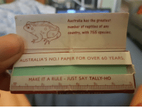 Tumblr, Australia, and Blog: Australia has the greatest  number of reptiles of any  country, with 755 species.  AUSTRALIA'S NO.I PAPER FOR OVER 60 YEARS.  MAKE IT A RULE - JUST SAY TALLY-HO  2  6  TTTTTITTTITTIIm memehumor:  Being #1 doesn't mean you're smart; frogs aren't reptiles.