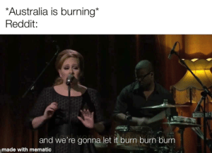 Yes we are: *Australia is burning*  Reddit:  and we're gonna let it burn burn burn  made with mematic Yes we are