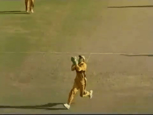 Africa, World Cup, and Australia: Australia vs South africa World cup 2007 match . Do you remamber this match?