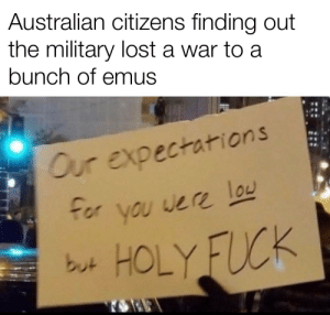 Lost, Birds, and Fuck: Australian citizens finding out  the military lost a war to a  bunch of emus  Our expectations  /honorsociety  you were lou  b나 HOLY FUCK They are big birds though