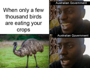 Birds, History, and Government: Australian Government  When only a few  thousand birds  are eating your  crops  Australian Government Shame this can't be part of the contest