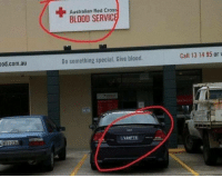 Australian, Blood, and Red: Australian Red Cros  BLOOD SERVIC  od.com.au  Do something special. Give blood  Call 13 14 95 orv Hmmmm