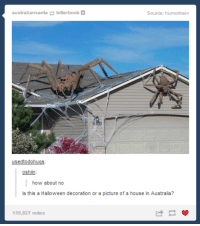 Australia Meme: australians anta bitterboob  Source: humortrai  usedtodohugs  oshiin  how about no  ls this a Halloween decoration or a picture of a house in Australia?  135,827 notes