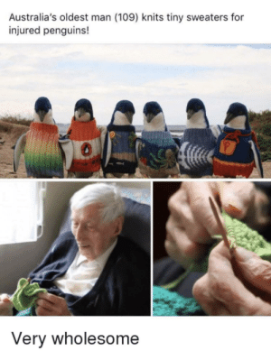 I will never forget how wholesome this guy is :) via /r/wholesomememes https://ift.tt/2ZR7WXZ: Australia's oldest man (109) knits tiny sweaters for  injured penguins!  Very wholesome I will never forget how wholesome this guy is :) via /r/wholesomememes https://ift.tt/2ZR7WXZ