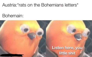Well you see the letters are fake people: Austria:*rats on the Bohemians letters*  Bohemain:  Listen here, you  little shit Well you see the letters are fake people