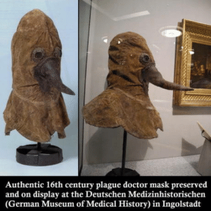 Doctor, History, and Mask: Authentic 16th century plague doctor mask preserved  and on display at the Deutschen Medizinhistorischen  (German Museum of Medical History) in Ingolstadt What a real plague doctor looked like