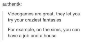 The Sims, House, and Sims: authentk  Videogames are great, they let you  try your craziest fantasies  For example, on the sims, you can  have a job and a house Videogames are great