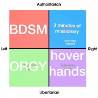 orgies: Authoritarian  BDSM  3 minutes of  missionary  (only male  orgasm)  Left  Right  hover  ORGY hands  Libertarian  Libertarian